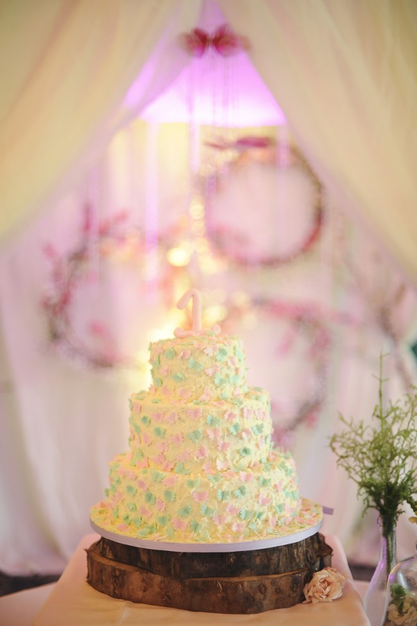 Rustic Butterfly Themed Cake