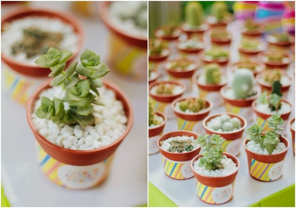 Mexican Fiesta Party Favors Cacti