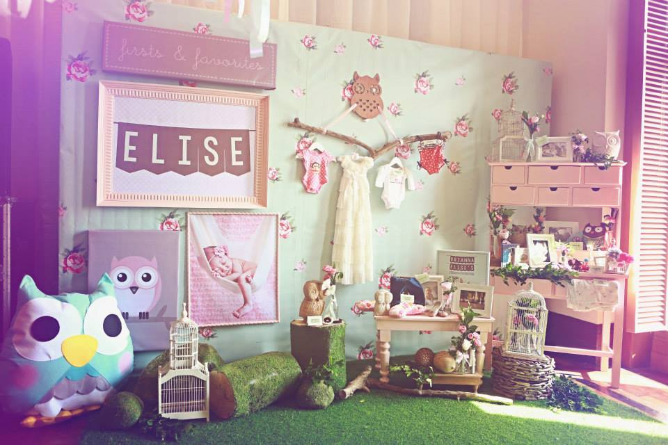 Elise S Owl Themed Birthday Party One Charming Day